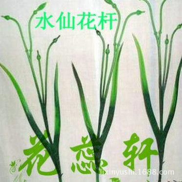 厂家直销 水晶花丝网花材料批发 仿真花杆水仙花杆4叉45厘米